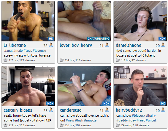 Gay Webcams Reviewed